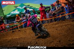 PuroMotor Motocross-313