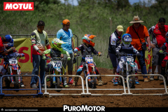 PuroMotor Motocross-330