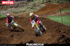 PuroMotor Motocross-441